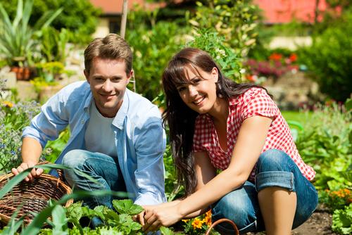 Addetto Marketing Prodotti Agricoli
