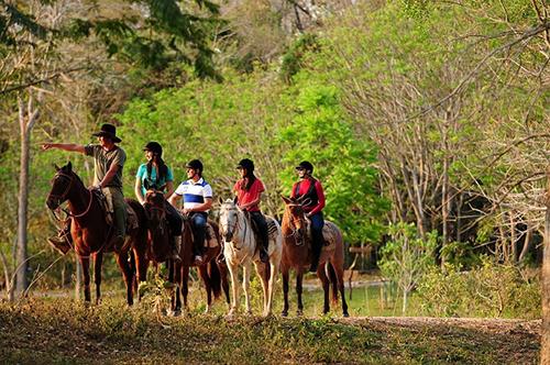 Operatore Turismo Equestre